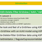 Lesson 4 - Gridview Manipulation / AJAX Modal Popup / Field Validators