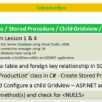 Lesson 5 - C# Class, Stored Procedure, Child Gridview, List